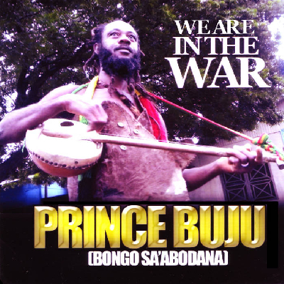 prince-buju-in-the-war