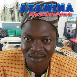 ATAMINA 'Sycophantic Friends' LP